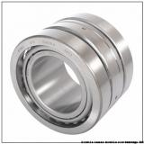 1050TDO1390-2 Double inner double row bearings TDI